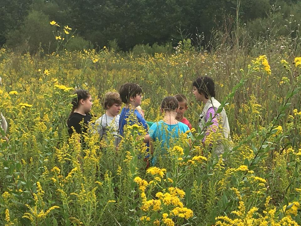 September 18th: All Grade Levels-Fall Field Trips to Stillwater & Pollinator Plot