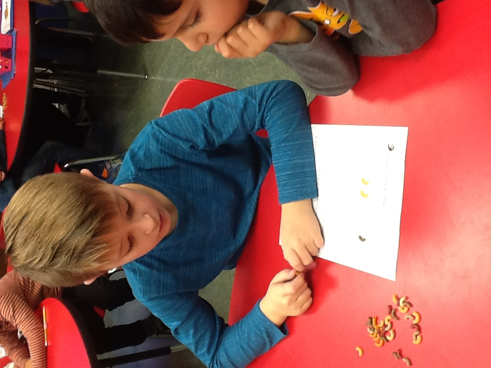 "We are studying commas, and this week in GATE the third graders use dry pasta as commas to insert into their ""comma detective"" sentences."